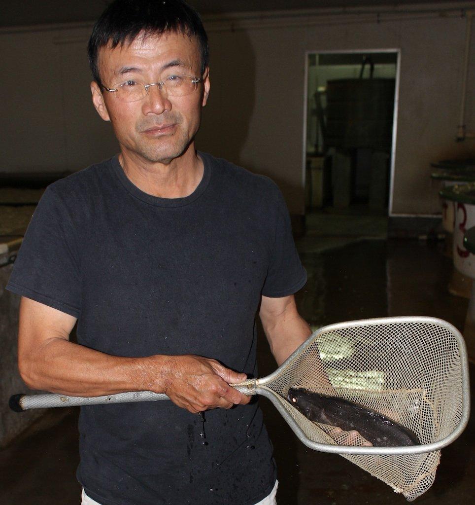 Mark Lee Mu Tsai